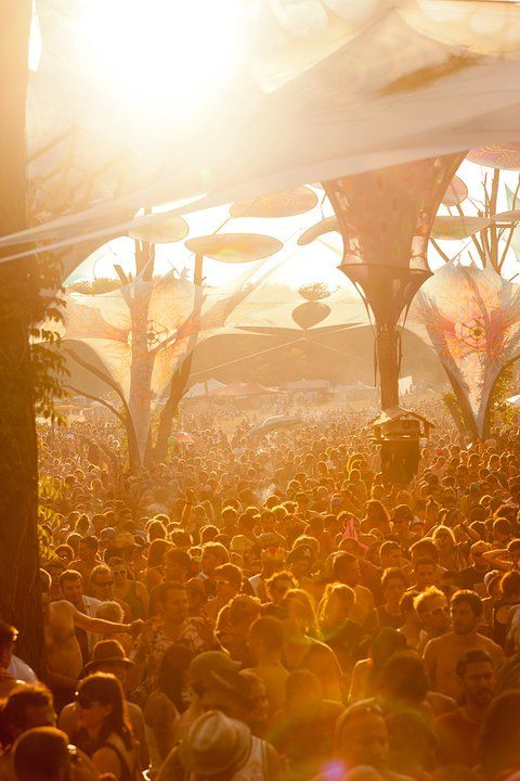 Beautiful photo capturing the OZORA vibe