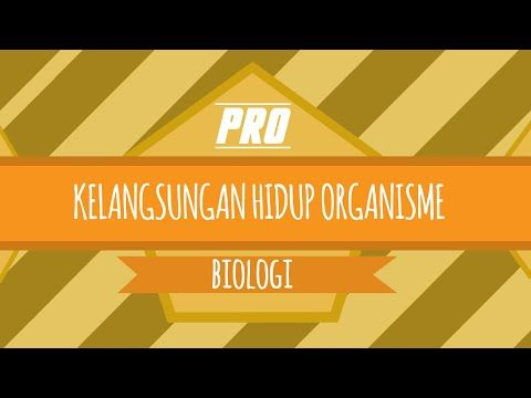 BIOLOGI - KELANGSUNGAN HIDUP ORGANISME - ADAPTASI DAN SELESKI ALAM - YouTube