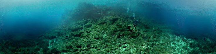Koursaros Bay or Pirates Bay is a popular spot for beach goears on Kassandra peninsula in Halkidiki. It is also nice place for scuba dive. Need little surface swim to reach drop of but it is wort it. Easy to do two dives, one to the left along drop of going down to 30-40 meters. Another posibility is to go left along boulder strawn slope. Plenty of ostopus, morey eels and other small stuff.