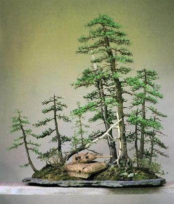大きく伸びた木々が茂る森を戦車が走る様子が表現されています。いかにも外国人的な感覚のBonsaiです。