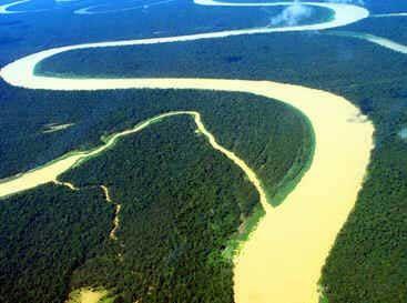 A Mata Atlântica - Brasil