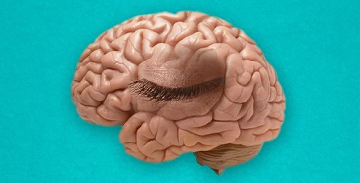 """Do our brains blink? The research says that our brains do, in fact, """"blink,"""" every time we shift our attention! When we shift our attention from one object to another, the activity of the neurons in the visual cortex (the part of the brain that processes visual information) is temporarily disrupted.https://mybrainware.com/neuroscience-network-news/ for more info."""