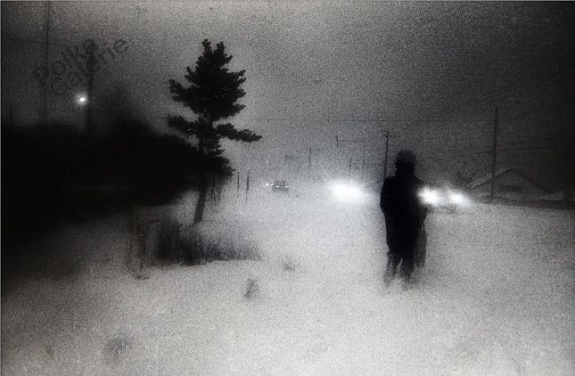"""secretcinema2:Hokkaido, 1978, Diado Moriyama""""For me, capturing what I feel with my body is more important than the technicalities of photography. If the image is shaking, it's OK, if it's out of focus, it's OK. Clarity isn't what photography is about."""""""