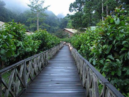 Danum Valley Conservation area, Borneo Rainforest Lodge Reservation, Bird Watching, Sabah, Malaysia, Borneo, Birding Tour & Packages
