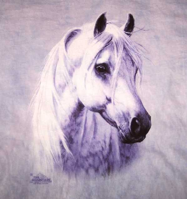 Moon Shadow White Arabian Horse Head Youth Shirt