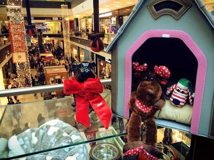 Módulo: Mall Arauco Maipú  Showroom: 7060 Carol Urzua Las Condes  www.bellacani.cl