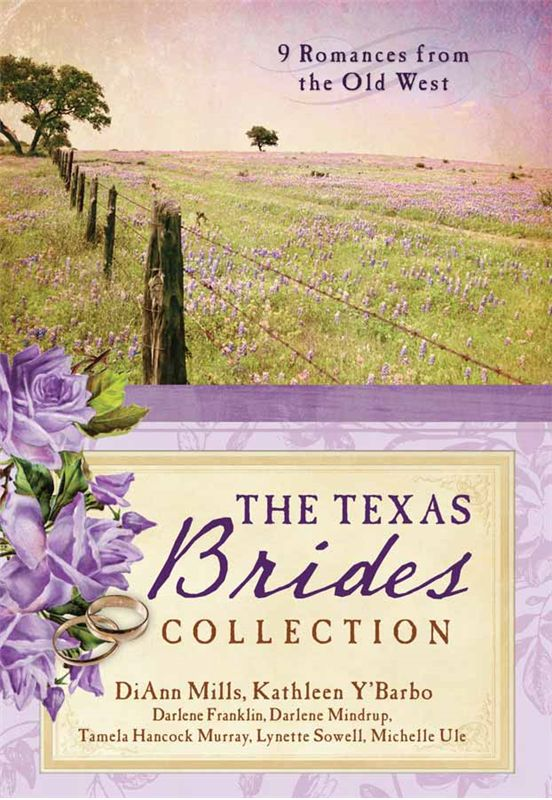 The Texas Brides Collection LOOOVE this book. Great collection of clean, inspirational Christian fiction placed in historical settings.