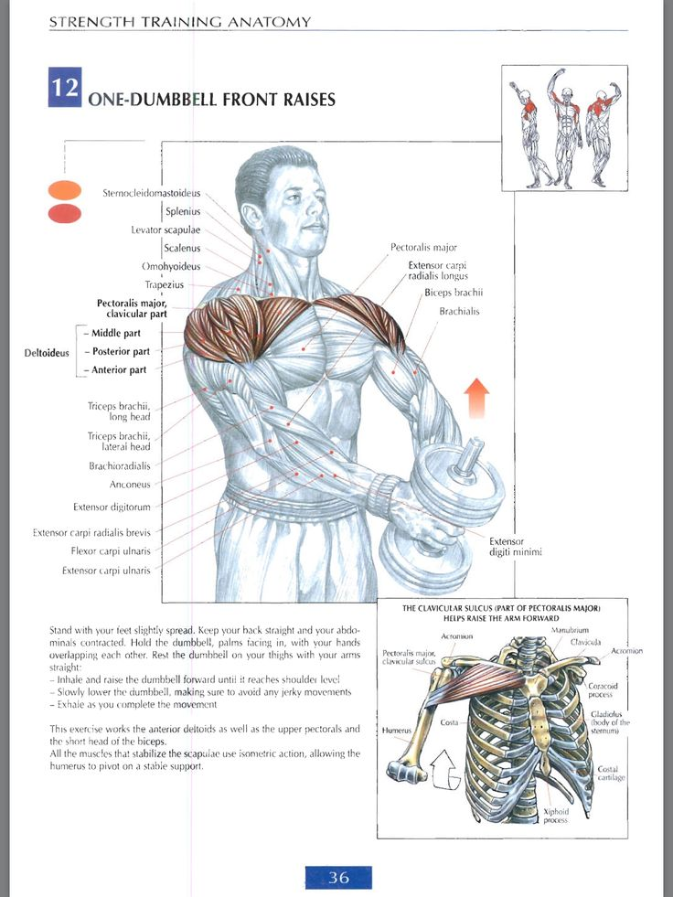 19 best Workout - Shoulders images on Pinterest | Work outs ...