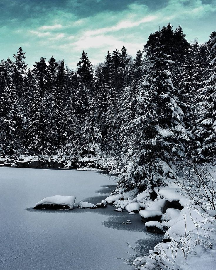 Néha az északi sarkon érzem magam :D  #skyporn #wildlife #landscape #forest #berry #road #thisisgermany #passau #büchlberg #holiday #family #tour #walk #vsconature #nature #naturelovers #instanature #snowing #letitsnow #white #sky #bányató #hun #ice #life #mine #lake #water #pool by brigittabibok