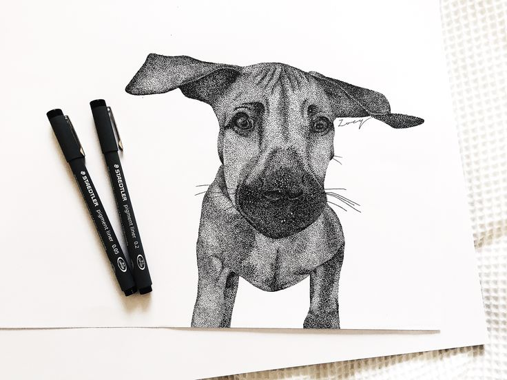 • Puppy • Dot drawing • Black ink