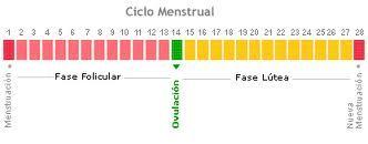 EJERCICIO FÍSICO Y CICLO MENSTRUAL