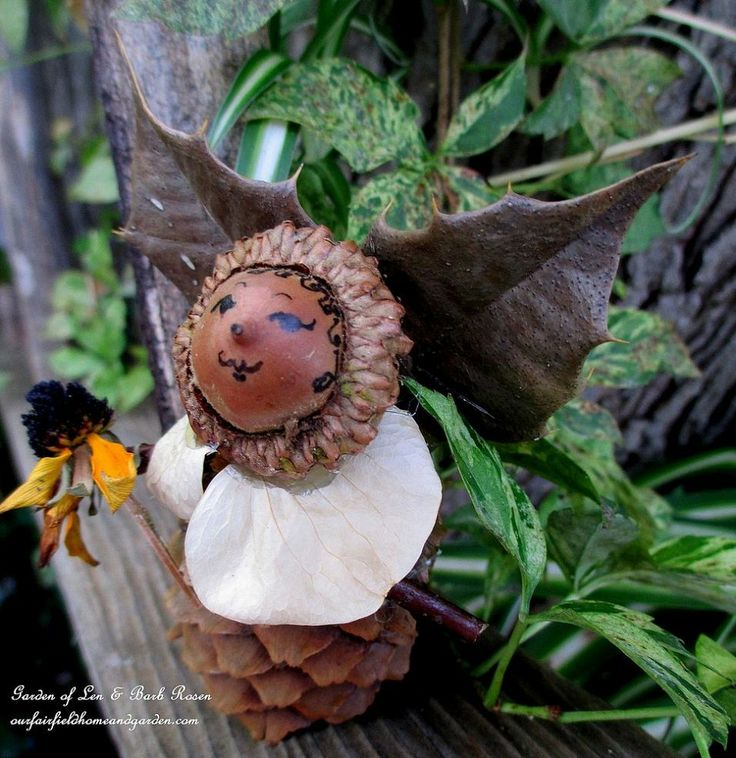 DIY Project ~ Make Fairies for Free from natural materials found in your garden and yard!