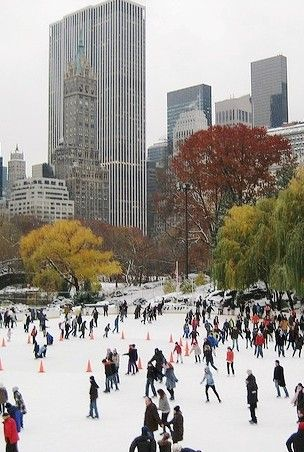 NYC. Christmas at Central Park