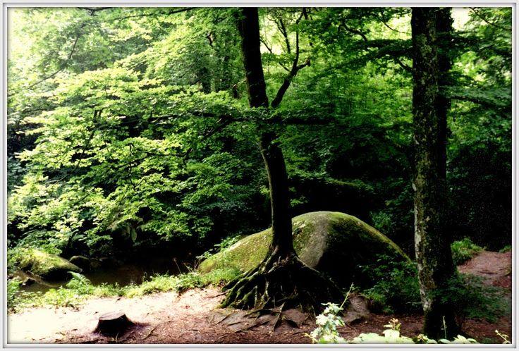 La légendaire forêt de Huelgoat - La Grotte d'Artus, Bretagna, 1992
