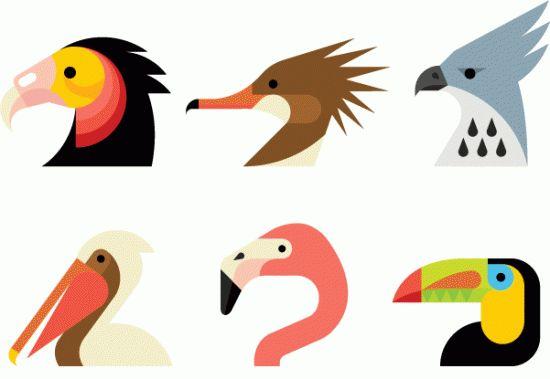 Aves en formas simples: bird illustration