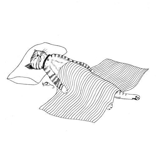 sleeping #cat #illustration