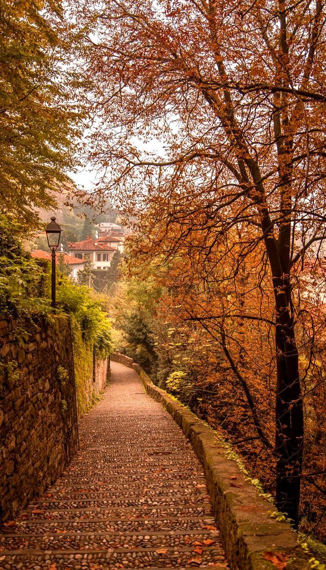 """No matter where U go and feel the power of Inner Peace take it with U then feel again in the middle of all tempest. Learn this and your stress will be under control till U are no more.""... Christa.....Autumn in Bergamo, Italy:"