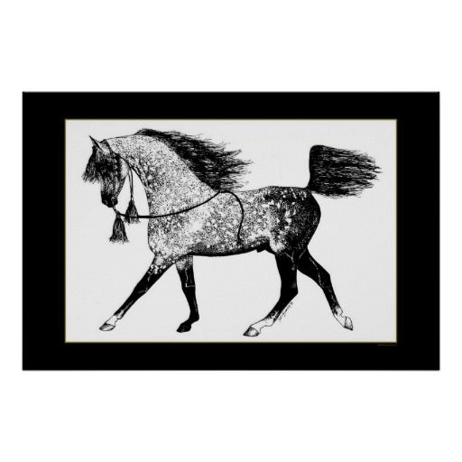 >>>Hello          	Arabian Horse Poster           	Arabian Horse Poster lowest price for you. In addition you can compare price with another store and read helpful reviews. BuyHow to          	Arabian Horse Poster today easy to Shops & Purchase Online - transferred directly secure and trusted ...Cleck Hot Deals >>> http://www.zazzle.com/arabian_horse_poster-228999906005504049?rf=238627982471231924&zbar=1&tc=terrest