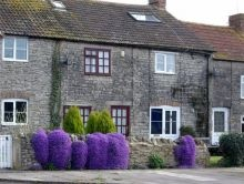 Orchard Cottages in Evercreech, Somerset