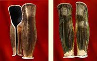 Schinieri in ottone anatomici foderati in feltro e bordati in pelle realizzati in lamina d'ottone, elastici. Rivestiti in morbido feltro e bordati in pelle. Ideali per persone medie o  medio alte e mediamente robuste.