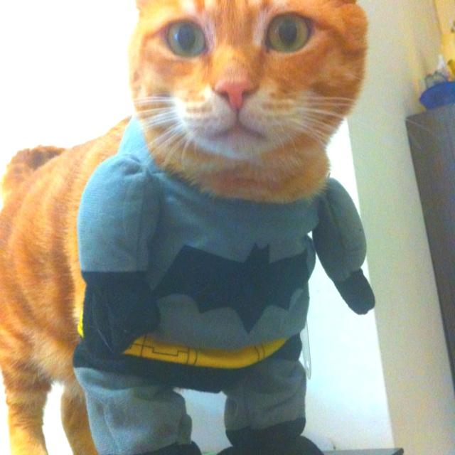 Jack Jack with batman suit.