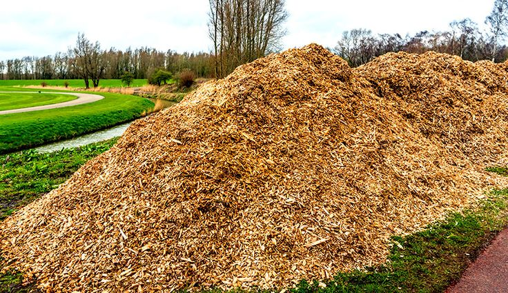 5 Reasons to Use More Wood Chips on Your Farm Farm