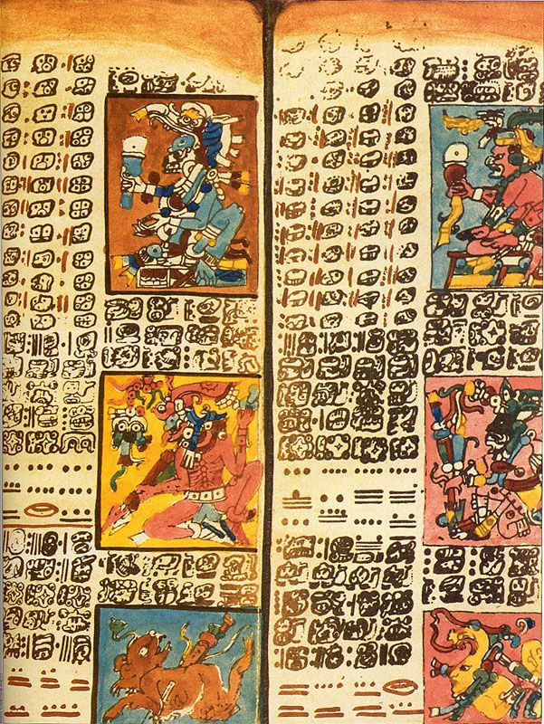 A leaflet of the Dresden Codex written in the Mayan Script on a type of paper called amatl. The Dresden Codex is one of only a few examples of Maya Calligraphy to escape the destruction of the Spanish Conquistadores and survive to the present day.