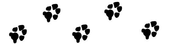 Free dog pawprint clipart with just a link back - bargain!