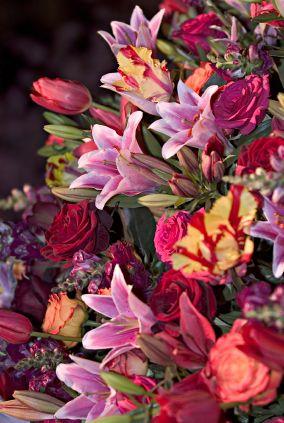 80 Best Philadelphia Flower Show Images On Pinterest Flower Show Philadelphia And