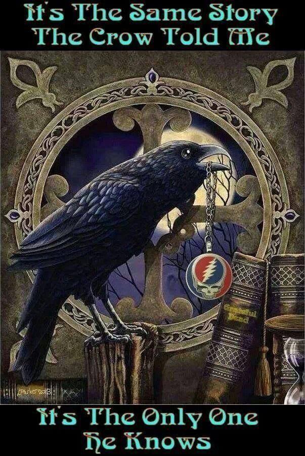 Lyric fire on the mountain grateful dead lyrics : 339 best Grateful Dead images on Pinterest | Grateful dead, The ...