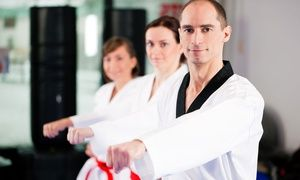 Groupon - 10 or 16 Martial-Arts Classes with Initiation Fee and Uniform at ATA Martial Arts (94% Off)  in Multiple Locations. Groupon deal price: $20