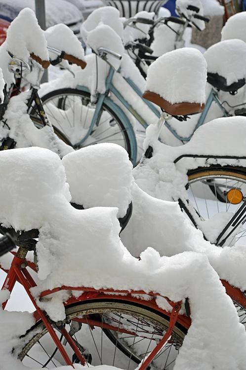 Neve in Città - Reggio Emilia, Italia - 19 Dicembre 2009 No Cycling today!