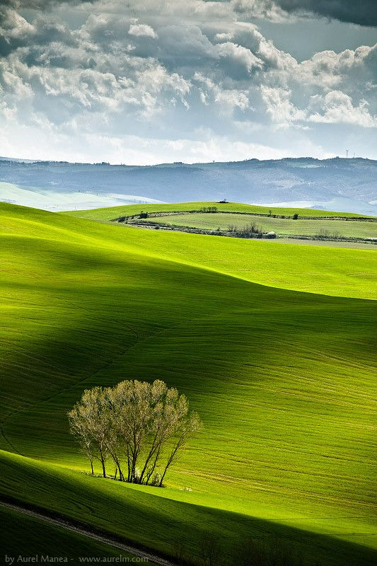 Fields & Shadows, Tuscany, Italy | by Aurel Manea, via 500px