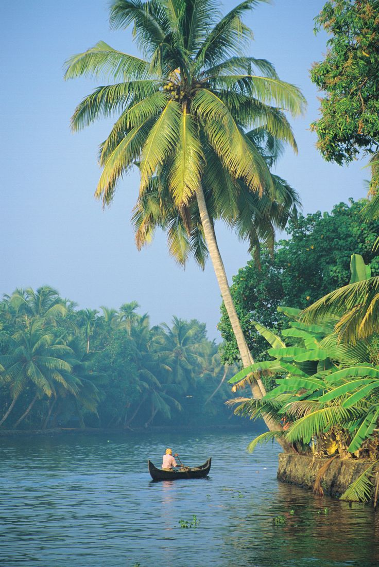 Travel With Kat - discovering new countries, cultures, and cuisines (image: Kerala Backwaters, India)