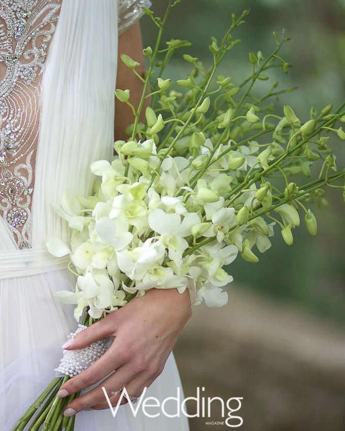 White dendrobium orchids tied with tulle and pearls. Created by Sargent's Floral.