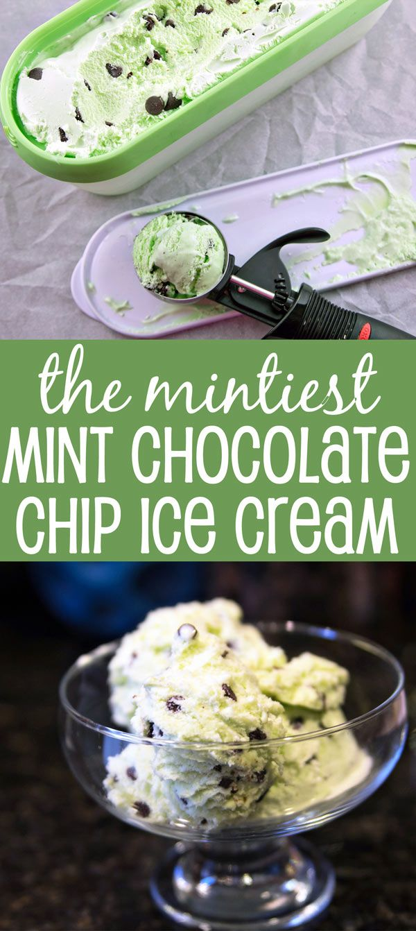 Mint Chocolate Chip Ice Cream: this is the mintiest chocolate chip ice cream out…