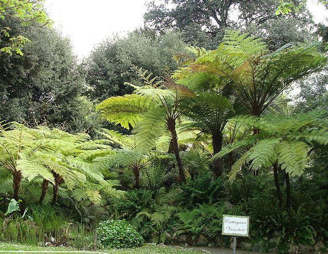L'Orto Botanico di Napoli!!!