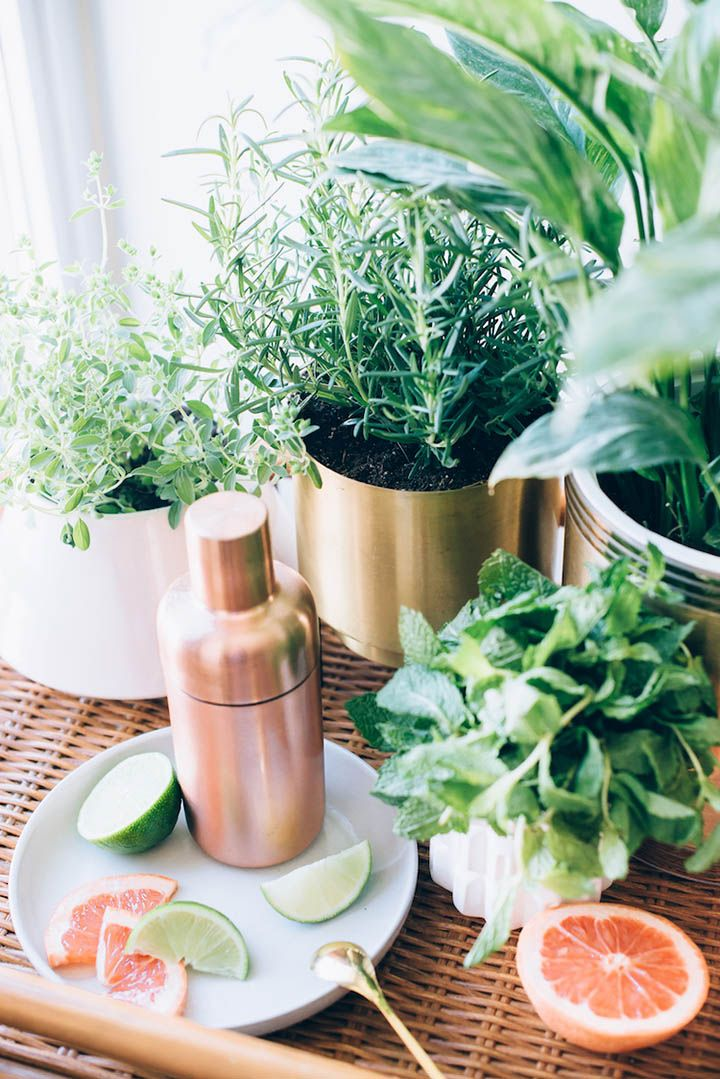 On the Menu: Grapefruit Herb Mojito - Urban Outfitters - Blog