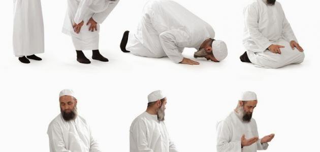 الصلاة عدد الصلوات المفروضة حكم الصلاة أركان الصلاة كيفية قيام الصلاة الصلوات الخمسة مبطلات الصلاة صلاة الجماعة الصلاة قال الله في ك تابه