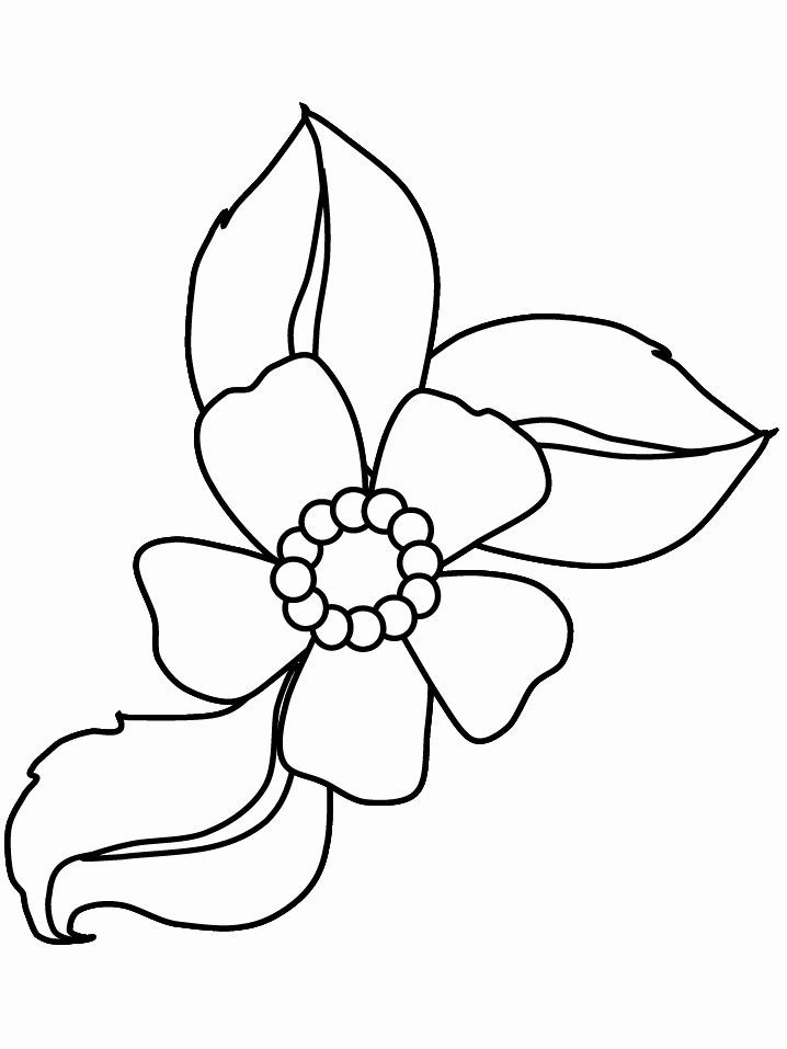 Coloring Pages Of Flowers Beautiful Cartoon Flowers Coloring Pages Cartoon Colorin Printable Flower Coloring Pages Flower Coloring Pages Cartoon Coloring Pages