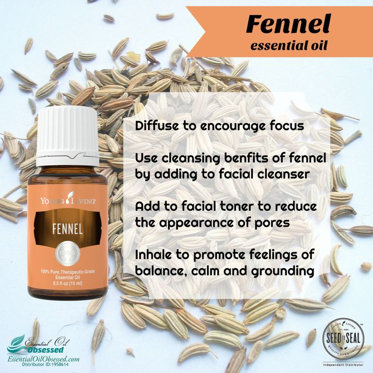 Fennel essential oil | Essential Oil Obsessed
