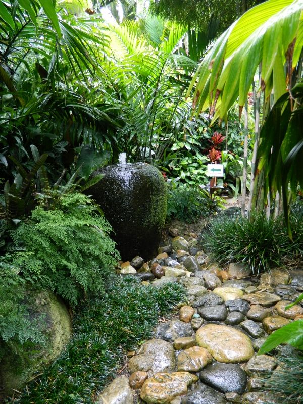 The 25 best ideas about Tropical Gardens on Pinterest