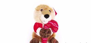 Mascota navideña llena de ternura y amor