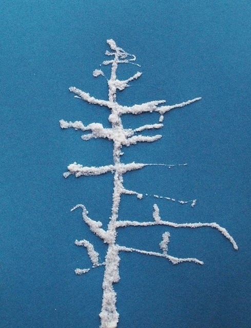 Winter Art, salt tree