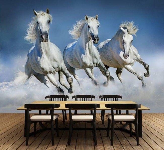 Fotobehang Arabische Paarden (366 x 254 cm)