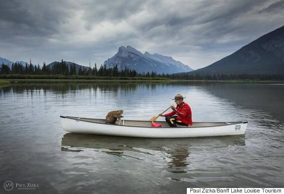 This Is One Of The Most Funny Canada Day Pictures We've Seen Yet - Banff/Lake Louise Tourism
