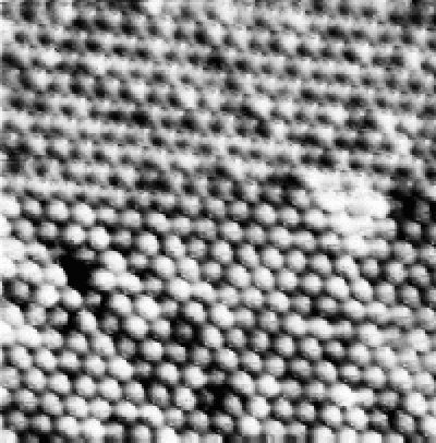 """A photograph of about 500 atoms of Niobium (41) and Selenium (34) neatly arranged at the surface of a crystal (darker atoms are simply lying lower in the surface). The image was taken using a special kind of microscope (called a scanning tunneling microscope) by Professor Nai-Chang Yeh of Cal Tech's Condensed Matter Physics Group. Despite what you may have previously thought, it IS possible to """"see"""" atoms"""