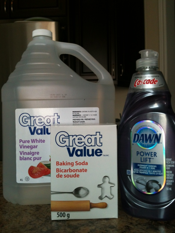 Diy Skunk Odor Remover 1 Liter Or Qt White Vinegar Or 3