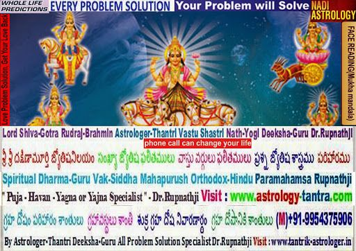Astrologer in Andhra Pradesh Hyderabad horoscope vastu tantra remedies match-making compatibility