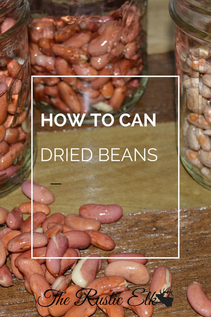 Canning dried beans is a great idea. No more store-bought beans are necessary and the beans you canned at home will be ready in a moments notice. Don't let the thought of pressure canning overwhelm you. Here's a complete guide on how to can dried beans using a pressure canner!
